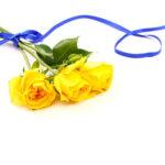送別会の花束を男性に渡すときの相場と花の種類は?退職でお勧めな色は?